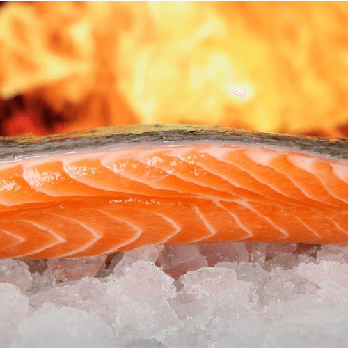 A fresh salmon fillet resting on ice, with the fire in the background ready to cook the fish