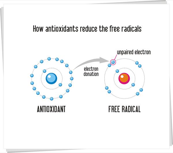 an illustration of the antioxidant, curcumin