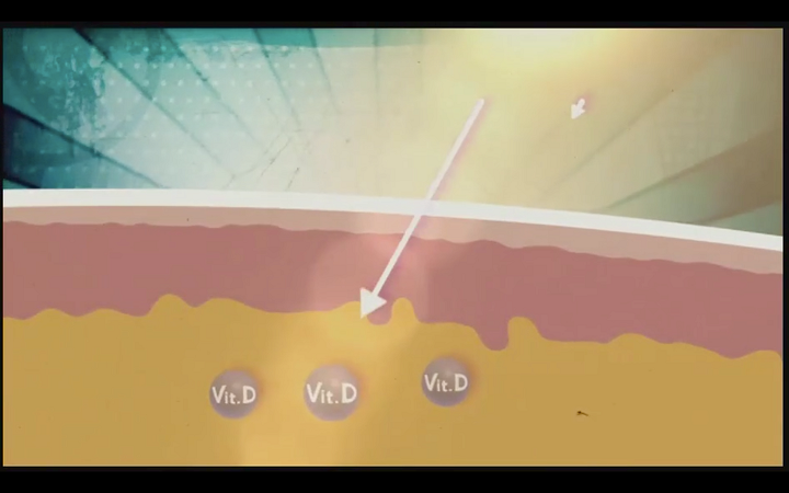 graphic of how vitamin d penetrates our skin