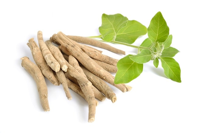 Ashwaganda extract used as a nootropic to ease anxiety.