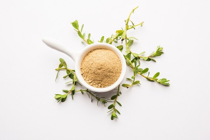 Bacopa Monnieri is a nootropic that can enhance memory