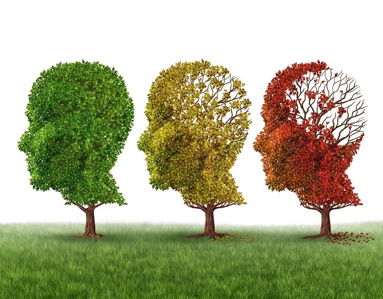 Nootropics can aid memory and prevent cognitive decline